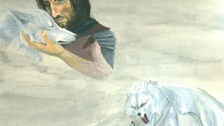 The two wolves fight